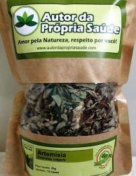 Artemísia - Artemisia vulgaris (Folhas)