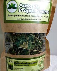 Melão-de-são-caetano - Momordica charantia (Folha)