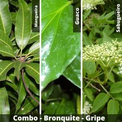 COMBO -  Bronquite - Gripe