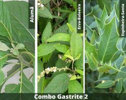 COMBO - Gastrite 2