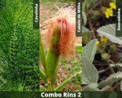 COMBO - Rins 2