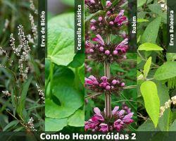 COMBO - Hemorróidas 2